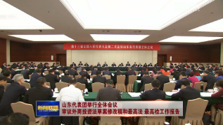 山东代表团举行全体会议 审议外商投资法草案修改稿和最高法  最高检工作报告