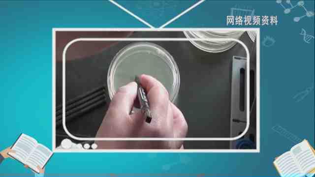 《生活大求真》:我家筷子居然这么脏?看不下去了!
