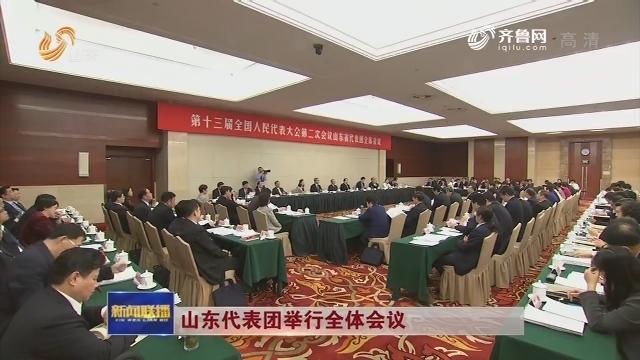 山東代表團舉行全體會議