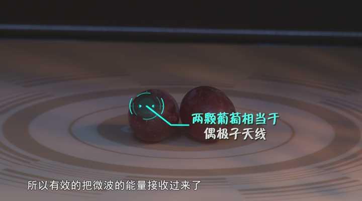 《生活大求真》:小心你吃的葡萄,它可能是一套导电天线!