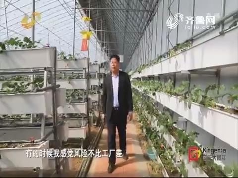 """【故乡追梦人】""""塑料大王""""追梦高端农业"""