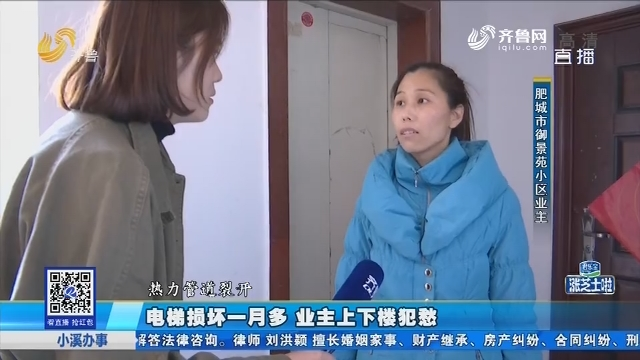 肥城:电梯损坏一月多 业主上下楼犯愁