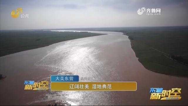 【大美东营】广阔壮美 湿地范例