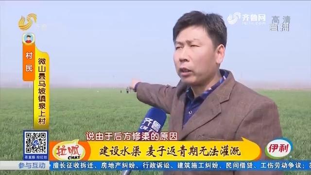 微山:建设水渠 麦子返青期无法灌溉