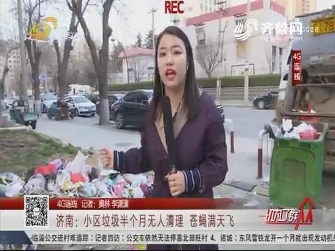 【4G连线】济南:小区垃圾半个月无人清理 苍蝇满天飞