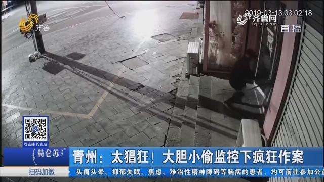 青州:太猖狂!大胆小偷监控下疯狂作案
