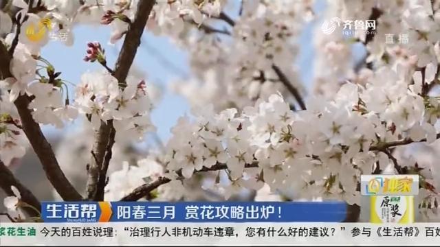 阳春三月 赏花攻略出炉!