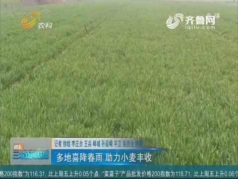 【春季农业生产】多地喜降春雨 助力小麦丰收
