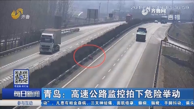 青岛:高速公路监控拍下伤害活动