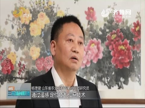 【专家解读】杨理健解读山东数字农业概念