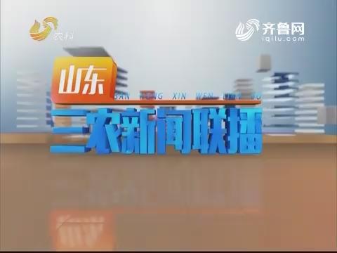 2019年03月22日《山东三农旧事联播》完备版