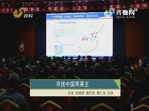 探求中国苹果王