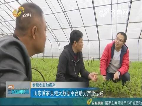 【伶俐农业助复兴】山东首家县域大数据平台助力财产复兴