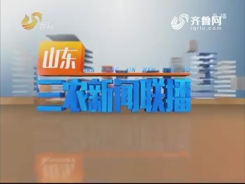 2019年03月24日《山东三农旧事联播》完备版