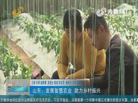 【走齐鲁 看样板】山东:生长伶俐农业 助力墟落复兴