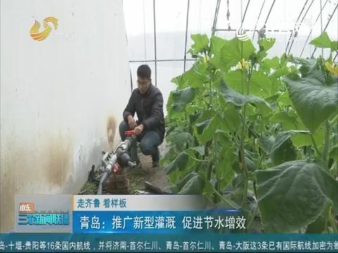 【走齐鲁 看样板】青岛:推行新型灌溉 促进节水增效