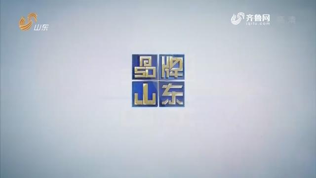 2019年03月25日《品牌山东》完整版