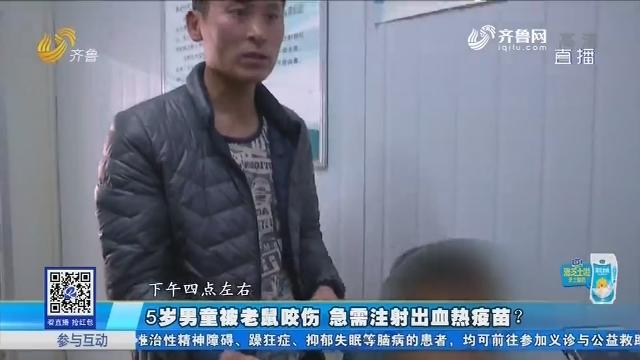5岁男童被老鼠咬伤 急需注射出血热疫苗?