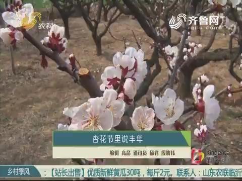 杏花节里说丰年