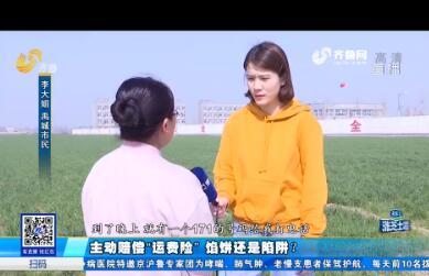 """禹城:主动赔偿""""运费险"""" 馅饼还是陷阱?"""