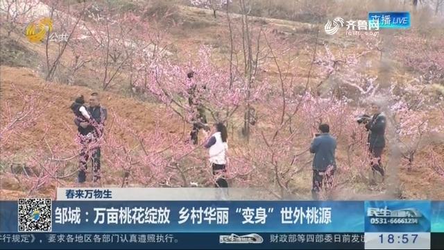 """【春来万物生】邹城:万亩桃花绽放 乡村华丽""""变身""""世外桃源"""