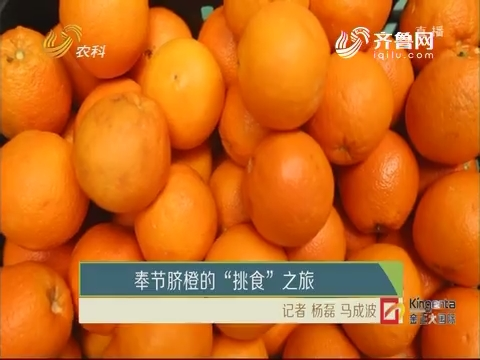 """奉节脐橙的""""挑食""""之旅"""