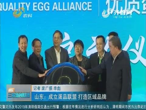 【三农信息快递】山东:成立蛋品联盟 打造区域品牌