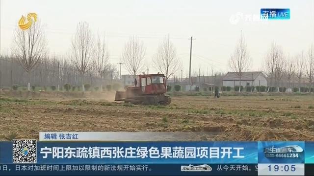 宁阳东疏镇西张庄绿色果蔬园项目开工