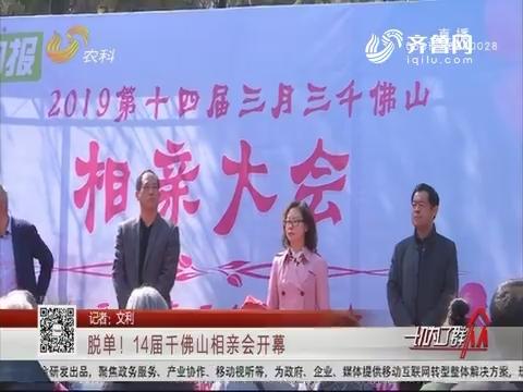 济南:脱单!14届千佛山相亲会开幕