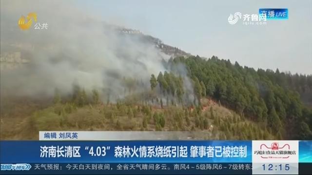 """济南长清区""""4.03""""森林火情系烧纸引起 肇事者已被控制"""