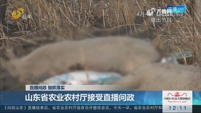 【直播问政 狠抓落实】山东省农业农村厅接受直播问政