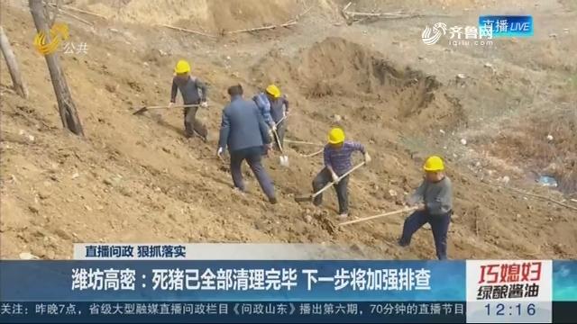 【直播问政 狠抓落实】潍坊高密:死猪已全部清理完毕 下一步将加强排查