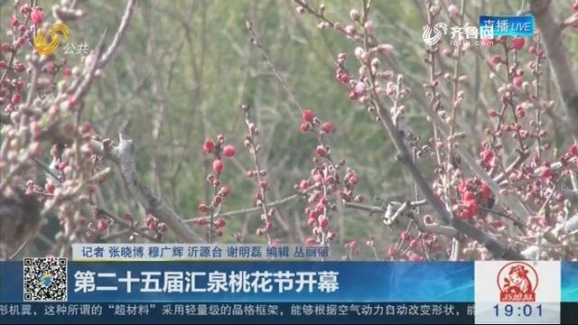 沂源:第二十五届汇泉桃花节开幕