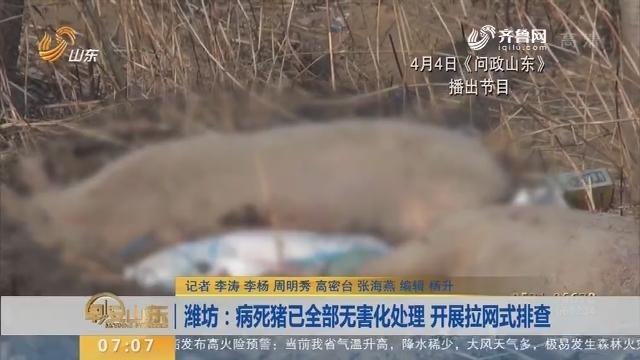 潍坊:病死猪已全部无害化处理 开展拉网式排查