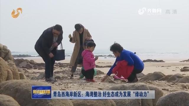 """青岛西海岸新区:海湾整治 好生态成为发展""""绿动力"""""""