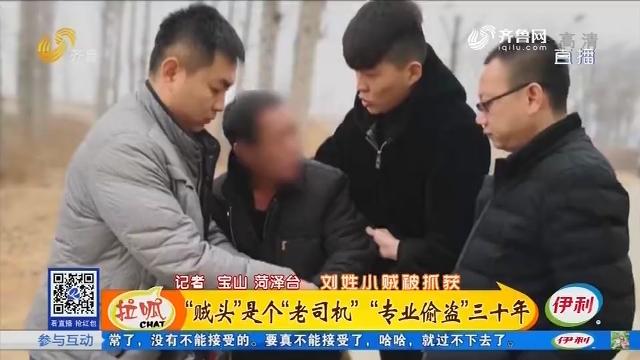 """菏泽:""""贼头""""是个""""老司机"""" """"专业偷盗""""三十年"""
