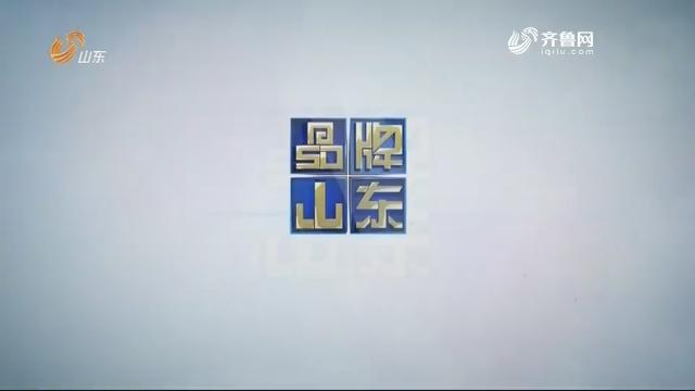 2019年04月08日《品牌山东》完整版