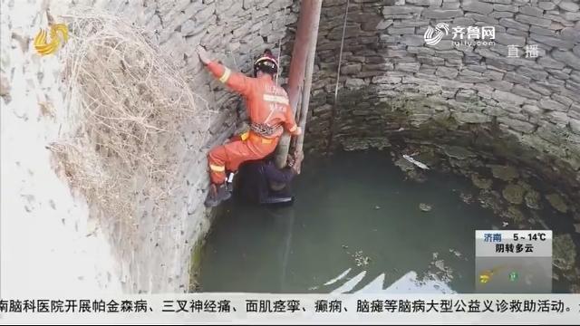 淄博:紧急求救!六旬老人坠入八米深井