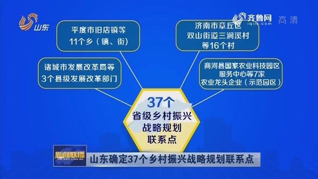 山东确定37个乡村振兴战略规划联系点