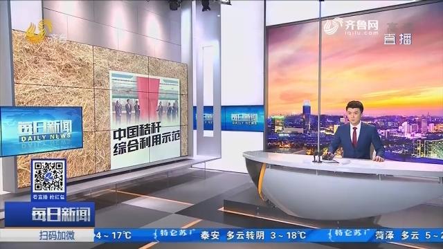 """联合国""""中国秸秆综合利用示范""""项目莱西启动"""