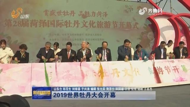 2019世界牡丹大会开幕