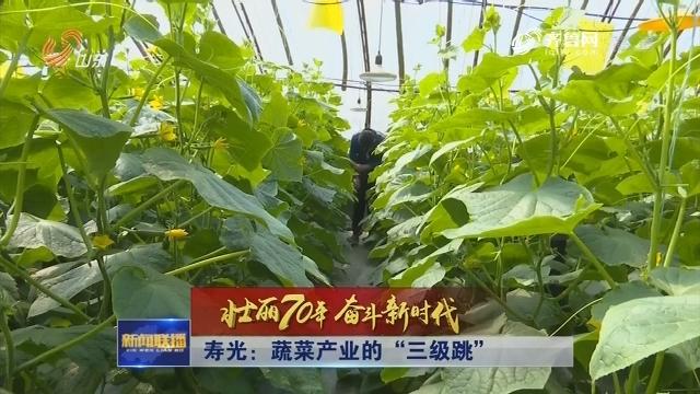 """【壮丽70年 奋斗新时代】寿光:蔬菜产业的""""三级跳"""""""