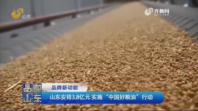 """【品牌新动能】山东安排3.8亿元实施""""中国好粮油""""行动"""