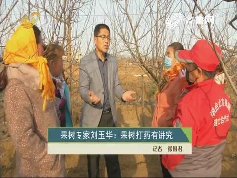 果树专家刘玉华:果树打药有讲究