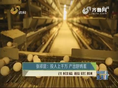 张祥昆:投入上千万 产出好鸡蛋