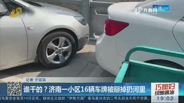 谁干的?济南一小区16辆车牌被掰掉扔河里