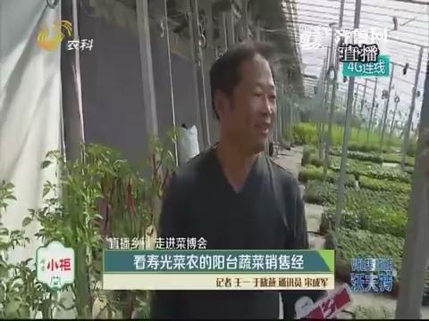 【直播乡村 走进菜博会】看寿光菜农的阳台蔬菜销售经