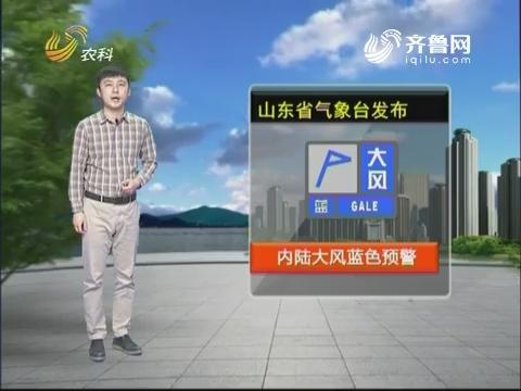 看天气:山东省气象台发布内陆大风蓝色预警