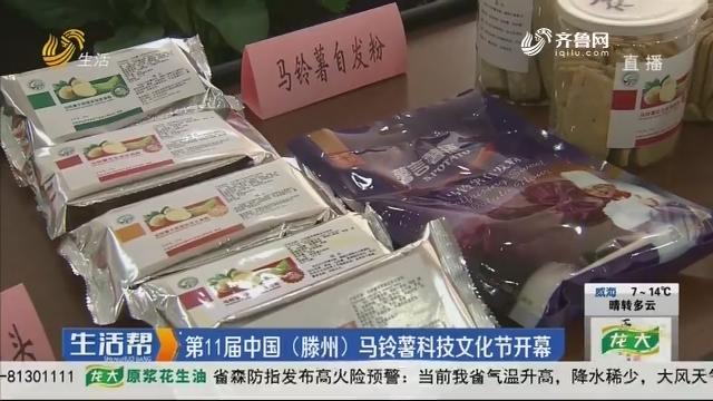 第11届中国(滕州)马铃薯科技文化节开幕