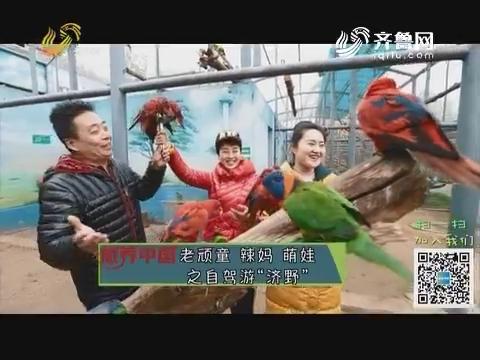 """20190419《旅养中国》:老顽童 辣妈 萌娃之自驾游""""济野"""""""